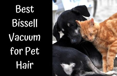 Best Bissell Vacuum for Pet Hair