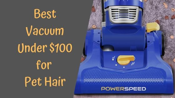 Best Vacuum Under 100 for Pet Hair